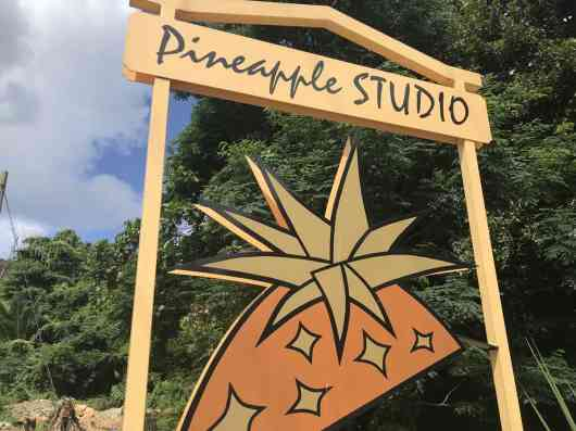 This is an image for Pineapple Studio